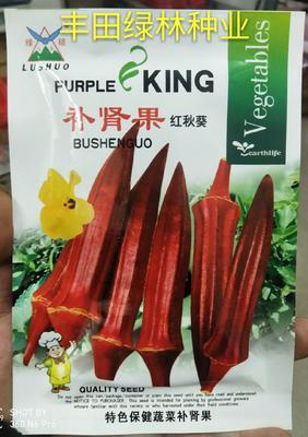 福建省漳州市南靖县红秋葵种子 常规良种
