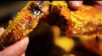 福建省泉州市安溪县土蜂蜜 玻璃瓶装 2年以上 90%以上
