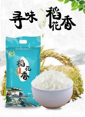 云南省昭通市盐津县稻花香二号大米 一等品 一季稻 粳米