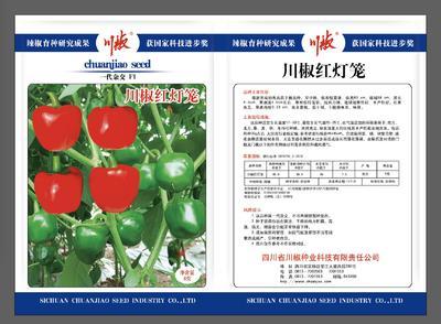 这是一张关于灯笼椒种子 杂交种 ≥85% 的产品图片