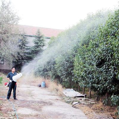 山东省潍坊市昌乐县喷雾机 手提式风送果园打药机