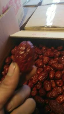 这是一张关于新疆红枣 二级 的产品图片