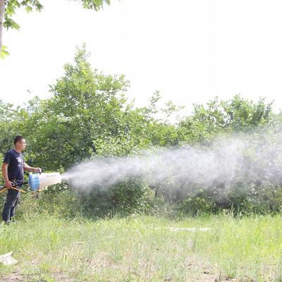山东省潍坊市昌乐县喷雾器 手提式风送远程喷雾机
