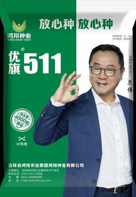 吉林省辽源市龙山区国审优旗511 双交种 ≥95%