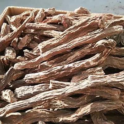 甘肃省酒泉市瓜州县(原安西县)锁阳 袋装 全根 干燥