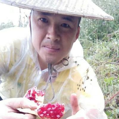 云南省文山壮族苗族自治州丘北县突尼斯软籽石榴 0.8 - 1斤