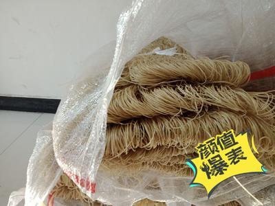 河南省漯河市临颍县红薯粉  农家手工纯红薯粉条