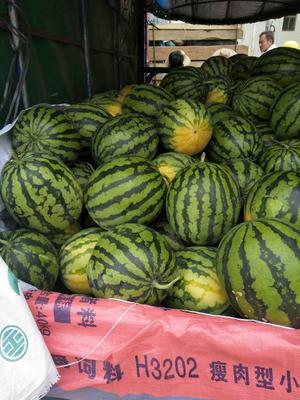 这是一张关于黑美人西瓜 6斤打底 8成熟 1茬 有籽 的产品图片