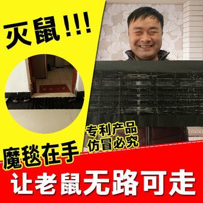 这是一张关于诱虫板  粘鼠板的产品图片