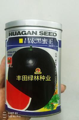 这是一张关于昌宏黑蜜王 二倍体杂交种 ≥90% 的产品图片