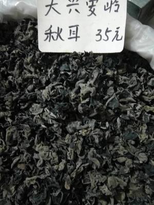 这是一张关于东北黑木耳 干木耳 特级 的产品图片