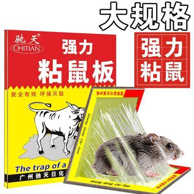 浙江省金华市东阳市诱捕器 粘鼠板