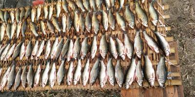 这是一张关于小鱼干 的产品图片