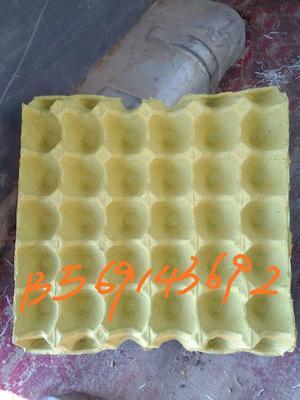 这是一张关于纸蛋托 的产品图片