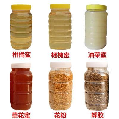 这是一张关于槐花蜜 塑料瓶装 2年 100% 的产品图片