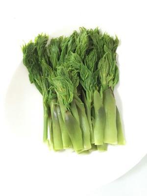 这是一张关于刺老芽  露天 鲜货 野生的产品图片