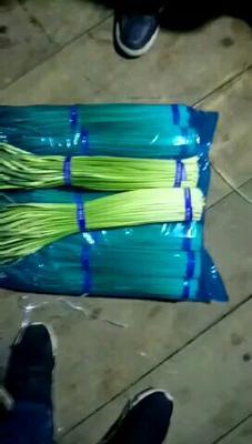 这是一张关于通许蒜薹 60~70cm 的产品图片