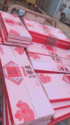 山西省运城市盐湖区舟山带鱼 野生 0.5公斤以下