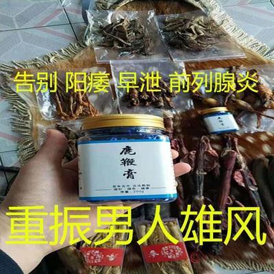 吉林省长春市双阳区梅花鹿鞭  鹿鞭熬制