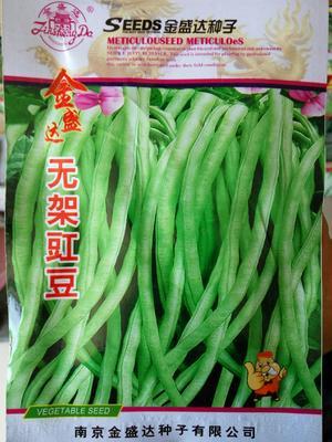 这是一张关于无架豇豆种子 ≥90% 的产品图片