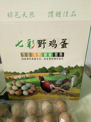 河南省新乡市卫辉市野鸡蛋 食用 礼盒装