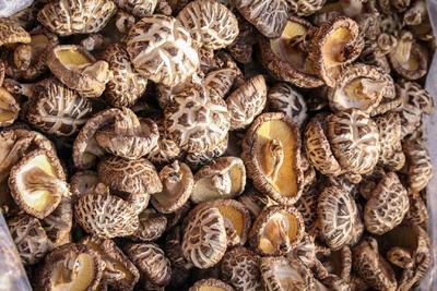 河南省郑州市二七区普通香菇 干香菇 5cm~7cm 冬菇