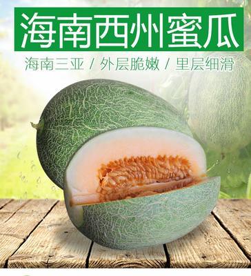 广东省潮州市湘桥区西州蜜 3斤以上