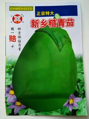 江苏省宿迁市沭阳县茄子种子 常规种 ≥85%