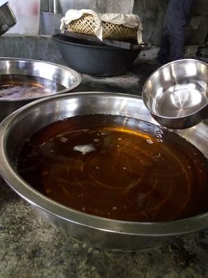 广西壮族自治区百色市凌云县现榨山茶油