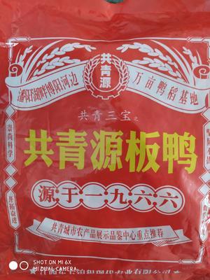 江西省九江市共青城市共青板鸭 礼盒装