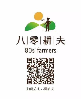 四川省德阳市什邡市籼米 一等品 晚稻 籼米