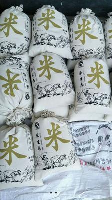 云南省大理白族自治州云龙县香米 一等品 一季稻 籼米