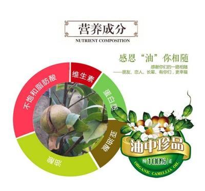 广西壮族自治区贺州市八步区野生山茶油