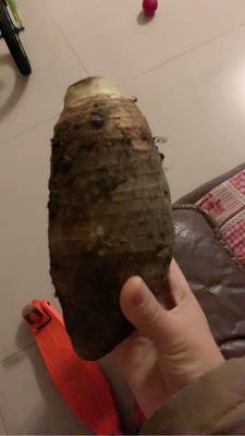 这是一张关于香芋 5cm以上 的产品图片