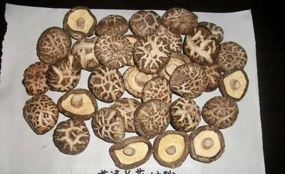 湖北省随州市广水市剪柄香菇 散装 1年