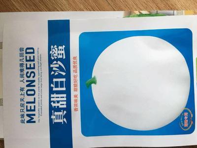 山东省济南市槐荫区白沙蜜甜瓜种子 杂交种 ≥99%