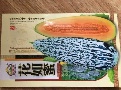 山东省济南市槐荫区花龙蜜甜瓜种子 杂交种 ≥99%