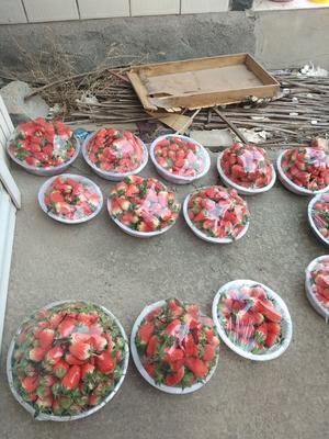 山东省济南市历城区甜宝草莓 20克以上