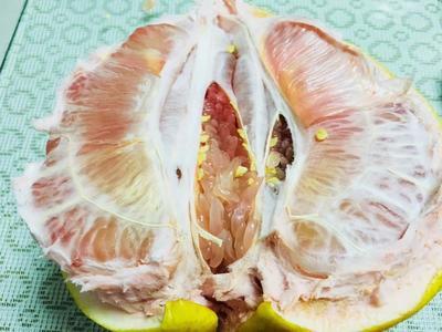 福建省宁德市霞浦县三红蜜柚 2.5斤以上