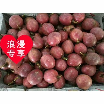 广东省茂名市高州市紫香一号百香果 40 - 50克
