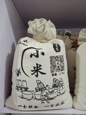 河北省保定市曲阳县黄金小米