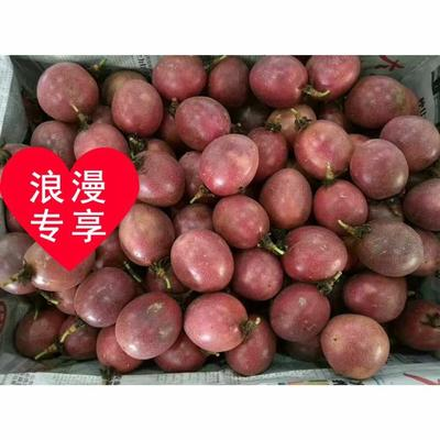 广东省茂名市高州市紫香一号百香果 70 - 80克