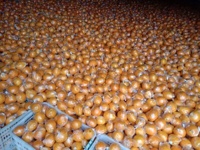 这是一张关于香丰橙 80-85mm 4-8两 的产品图片