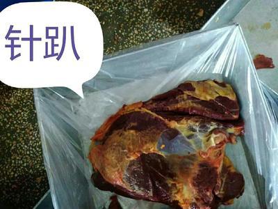 这是一张关于马肉 的产品图片