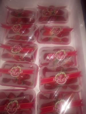这是一张关于甜宝草莓 20克以上 的产品图片