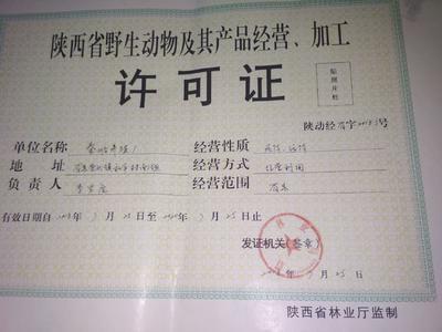这是一张关于秦岭豪猪 30-40斤 的产品图片