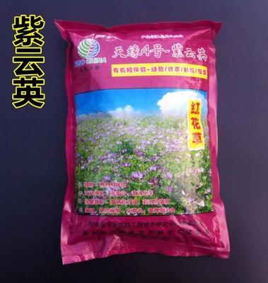 江苏省徐州市新沂市紫云英种子 包衣15元净籽25元