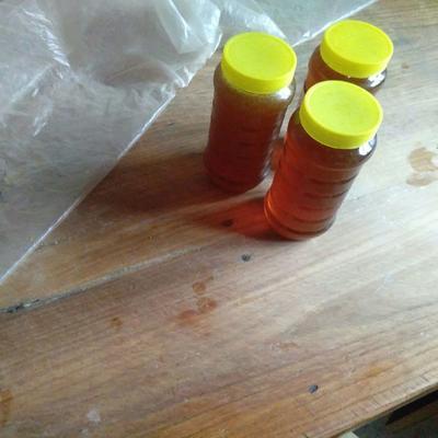 这是一张关于土蜂蜜 塑料瓶装 2年 100% 的产品图片