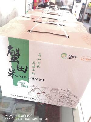 河北省唐山市滦南县蟹田米 一等品 中稻 籼米