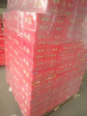 这是一张关于红富士苹果 80mm以上 统货 纸袋 的产品图片